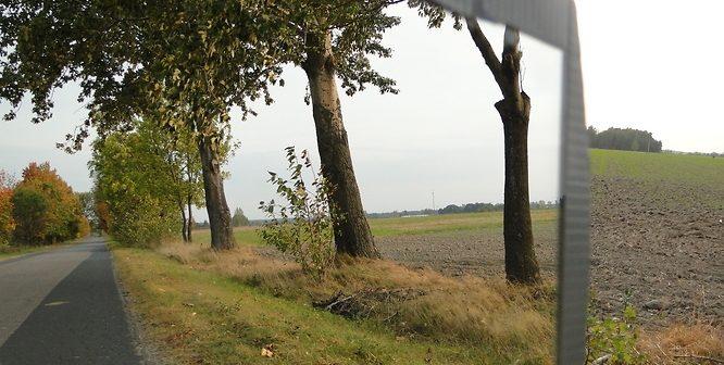 ii_miejsce-_natalia_dzieciatko-odbita_jesien